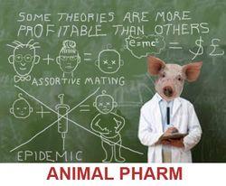 Animal farm3 -RED copy1