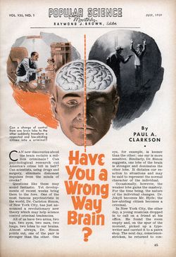 Med_wrong_way_brain_0