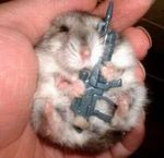 Mouse-with-gun