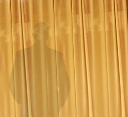 Man behind curtain