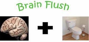 Brain flush