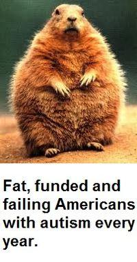 Groundhog Yr