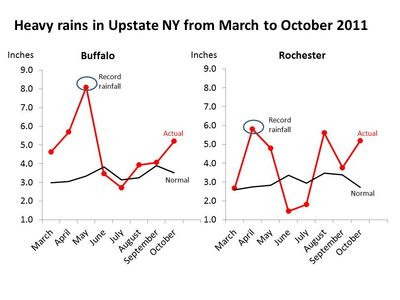 Leroy rainfall rochester Tics and toxins charts