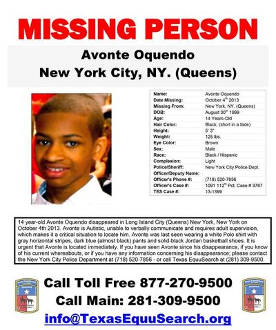 Avonte New Flyer