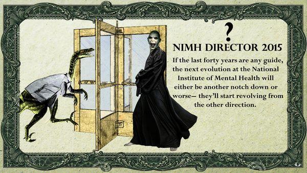 5 Fresh Hell NIMH Revolving Door Adriana Gamondes