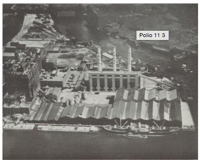 Polio 12 5
