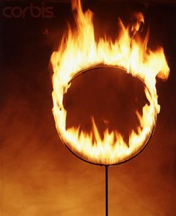 Hoop on Fire