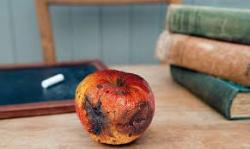 Rotten apple for teacher