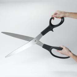 Scissors giant