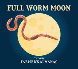 Full_worm_moon