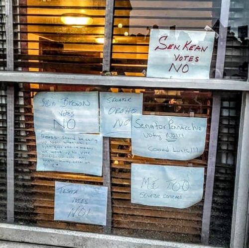 NJ Senators No Votes in Window