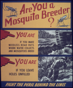 'Are_you_a_mosquito_breeder'_-_NARA_-_513877