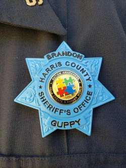 Brandon Guppy Badge